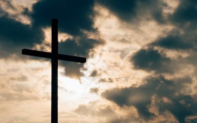 Addressing Churches that Hurt and Betray Us